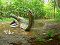 Diplodocus, DinoPark Vyškov.jpg