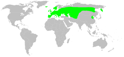 Distribution.dolomedes.fimbriatus.1.png