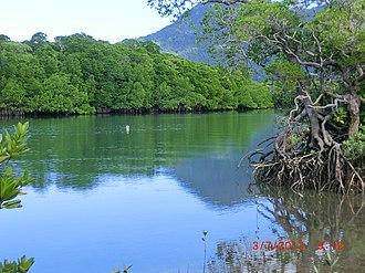 Diwan, Queensland - Diwan landscape, 2013