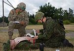 Dog Company trains for medevac in Lithuania 150709-A-FJ979-007.jpg