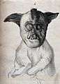 Dog with congenital defects. Lithograph. Wellcome V0022908.jpg