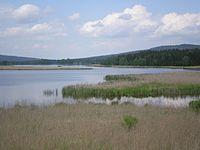 Dolejší Padrťský rybník 1.JPG