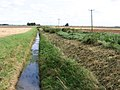 Drain beside Jones's Drove, Whittlesey, Cambs - geograph.org.uk - 548493.jpg