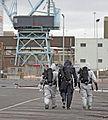 EOD Exercise Dublin Port (5475141590).jpg