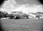ETH-BIB-Camp Serengeti-Kilimanjaroflug 1929-30-LBS MH02-07-0507.tif