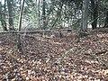 Earthwork enclosures, Oare Common, Berkshire 04.jpg