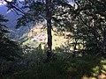 Erbonne, da sentiero Alpe Sella-Scudellate.jpg