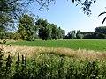 Erpe-Mere Honegemstraat Honegem graslanden - 228055 - onroerenderfgoed.jpg