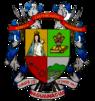 Escudo Naguanagua Carabobo.PNG