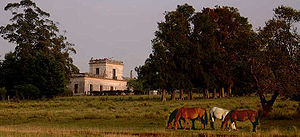 Agriculture in Uruguay - A heartland of historic estancias : Estancia San Eugenio, Casupá, southern department of Flórida