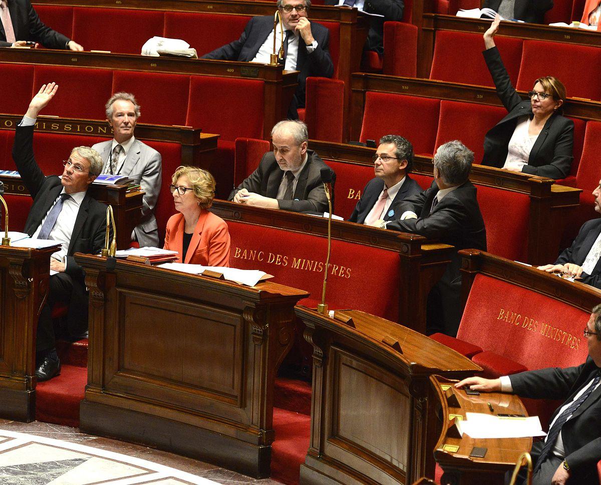 Commissaire du gouvernement france wikip dia - Chambre nationale commissaire priseur ...
