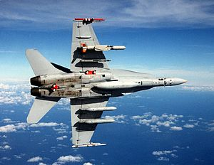 F-18C with SLAM-ER missile and AWW-13 pods in flight.jpg
