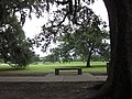 FDR Mall City Park NOLA June 2011 Bench.JPG