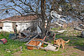 FEMA - 22745 - Photograph by Marvin Nauman taken on 03-06-2006 in Louisiana.jpg