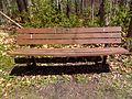FLT M19 1.3 mi - Jim Schug Rail Trail 3.5 mi bench, Town of Dryden maintenance. - panoramio.jpg