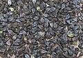 Fagopyrum esculentum fruits, boekweit vruchten.jpg