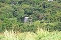 Farm Track, Saint Lucia - panoramio.jpg