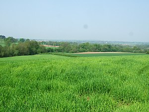 English: Farmland Farmland near Willoughbridge...