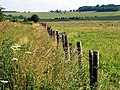 Farmland and Byway near Upper Lambourn - geograph.org.uk - 25935.jpg
