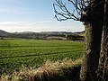 Farmland east of Kilmany - geograph.org.uk - 77686.jpg