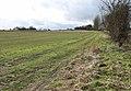 Farmtrack skirting field south of Sisland - geograph.org.uk - 1727781.jpg