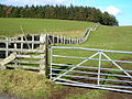 Fence And Wall Near Crawfordjohn - geograph.org.uk - 342336.jpg