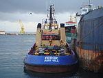 Ferox Port Vila 2.JPG