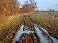 Field-edge footpath from Furneaux Farm - geograph.org.uk - 1070974.jpg