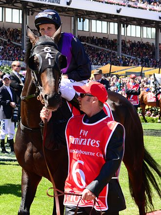 Damien Oliver - Damien Oliver mounted on Fiorente at the 2013 Melbourne Cup.