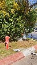 Fire-fighting-facility node-7285209802.jpg