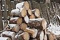 Firewood in Russia. img 11.jpg