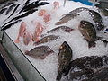 Fish food Udonthani WD2.JPG