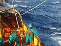Fishing aboard trawler African Queen.jpg