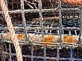 Fishing nets - Alvor Harbour - The Algarve, Portugal (1469851762).jpg