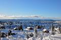 Fjelleventyret i Valdres!.png