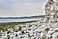 Flamborough, South Bay, UK, 08082015, jcw1967, ope (7) (33190060170).jpg