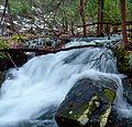 Flickr - Nicholas T - Fall Creek Hike (3).jpg