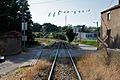 Flickr - nmorao - PK 18, Linha do Vouga, 2010.07.06.jpg