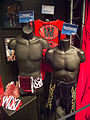 Flickr - simononly - WWE Fan Axxess - Classic Memorabilia-Ring Gear (43).jpg