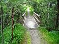 Footbridge in Leanachan Forest - geograph.org.uk - 511334.jpg