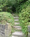 Footpath and Steps - Worden Grove, Pasture Lane, Clayton - geograph.org.uk - 967339.jpg