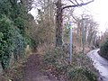 Footpath on Pheasant Lane - geograph.org.uk - 1131210.jpg