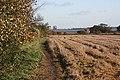 Footpath to Wick Farm - geograph.org.uk - 1044657.jpg