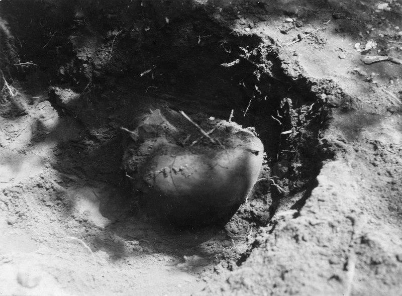 File:Från utgrävning av gravfält i en trädgård i La Gloria. Grav 8. Urababukten, Sydamerika, La Gloria - SMVK - 003446.tif