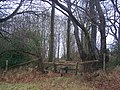 Frid Wood and stile - geograph.org.uk - 1126345.jpg