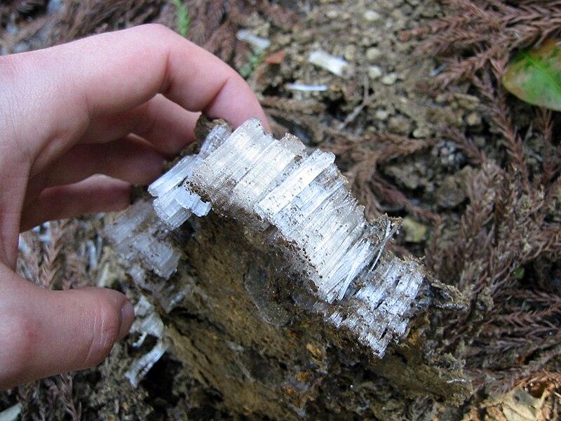 File:Frost column 2.jpg