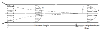 Scale analysis (mathematics) - Developing flow in the entrance region of a parallel-plates duct