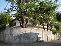 FvfTagudinIlocosSur5187 14.JPG