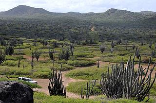 Washington Slagbaai National Park ecological reserve on Bonaire