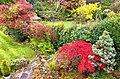 Garden Colours (30496739541).jpg